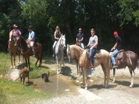 Tour all riding