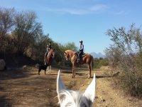 Your adventure on horseback