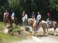 Tour everything on horseback