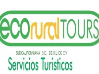 eco rural tours Whale Watching