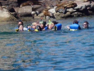 eco rural tours Snorkel