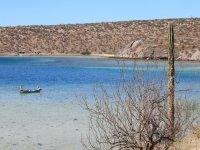 Landscapes of Baja