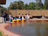 Actividad acuatica