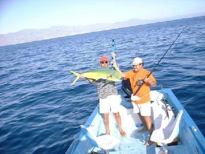 Ventana Bay Resort Pesca