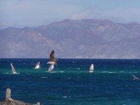 Deporte de windsur en el mar