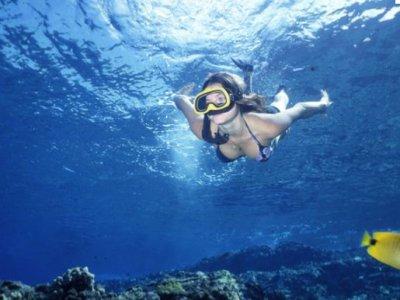 Ventana Bay Resort Snorkel