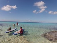 paddle on the island