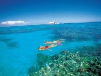 Snorkeling and catamaran