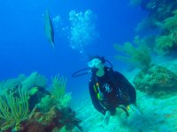 Sorpréndete en un mundo diferente bajo el agua