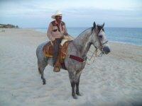 Rutas a caballo
