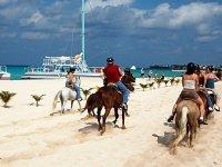 Cabalga sobre la arena