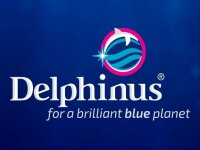 Delphinus Cancún