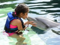 Kissing the dolphin
