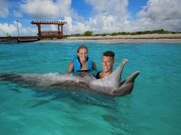 Experience with dolphins in pairs