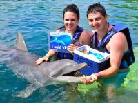 Marriage petition with dolphins