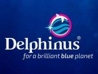 Delphinus Xel-Há