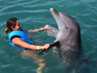 Bailando con el delfin