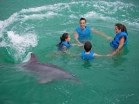 Family in a circle with dolphin