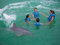Familia en circulo con delfin