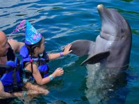 Children's party with dolphins