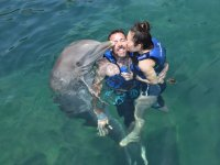 Receiving pampering from the dolphin