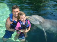 Kiss of dolphin