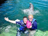 Declaration of love with dolphins