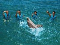 Jugando en grupo con el delfin