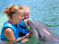Mom and child in interaction with dolphins