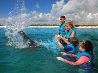 Toda la familia con el delfin
