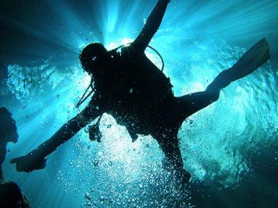 Dive Adventures Tulum Buceo