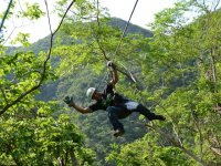 Zip-lines in the jungle