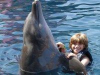 Saludando a un delfin