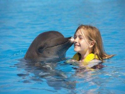 Dolphinaris Cancún