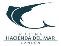 Marina Hacienda del Mar Vela