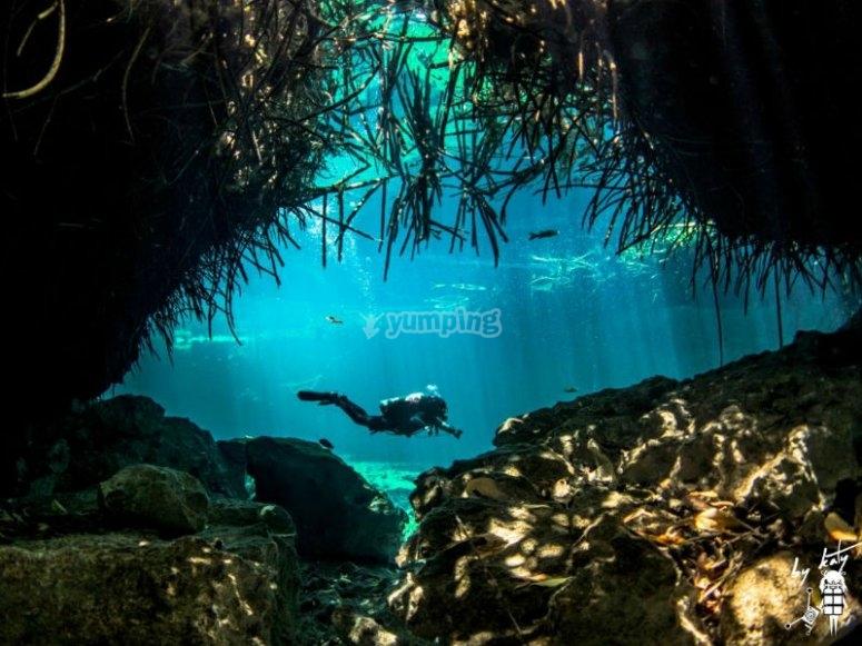 Programa Discover Scuba Diving en cenote