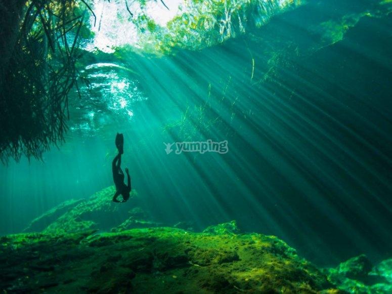 Descubriendo la belleza de los cenotes