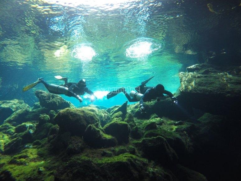 Buceo en aguas cristalinas de los cenotes
