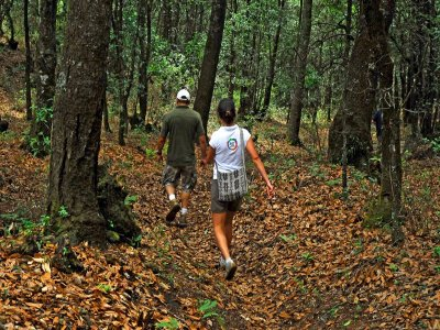 Parque Xúmu Caminata