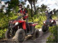 Four-wheeler excursion