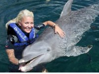 Interaction with dolphins