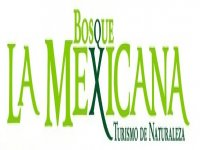 Bosque la Mexicana Vía Ferrata