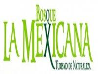 Bosque la Mexicana