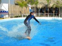 Surfeando sobre el delf�n