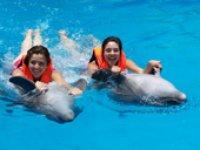 Un paseo con los delfines