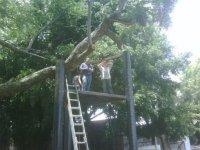 Park canopy