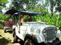Tour in Chiapas