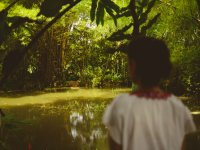 Visiting the Chiapaneca jungle