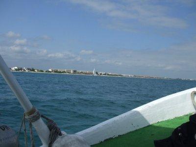 Dive in Puerto Morelos Pesca