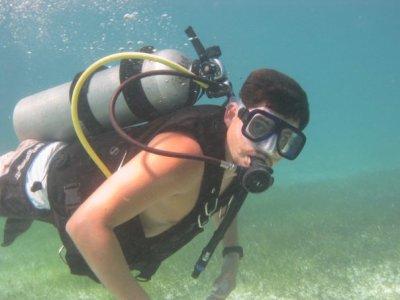 Dive in Puerto Morelos